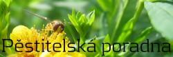 Pěstitelská poradna - rady, tipy, triky pro pěstitele